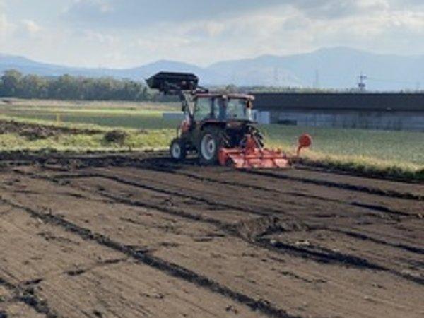 農業体験の画像